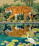 Amur Tiger wall mural | Wallpaper Murals