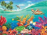Free Download Tropical Coral Reef Mural Wallpaper Murals HD Wallpaper